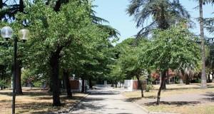 Il Parco Bottazzi è un Bene Comune e va restituito ai cittadini!