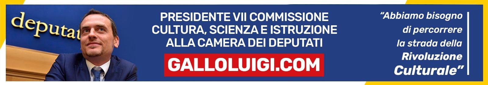 Gallo Luigi PRESIDENTE della VII COMMISSIONE (CULTURA, SCIENZA E ISTRUZIONE)